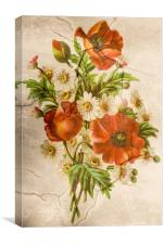 Vintage Shabby Chic Rustic Poppies Bouquet, Canvas Print