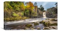 Autumn at High Force Waterfall, Canvas Print