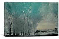 Infrared photography 5, Canvas Print