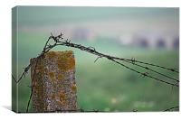 Barbed wire in the countryside 2, Canvas Print