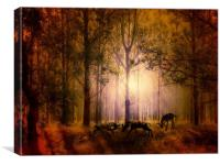 Deers In the woods, Canvas Print