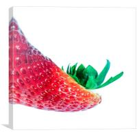 A Strawberry Like No Other, Canvas Print