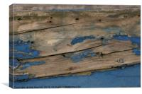 Old Flaking Paint, Canvas Print