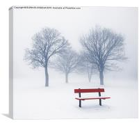 Winter trees and bench in fog, Canvas Print