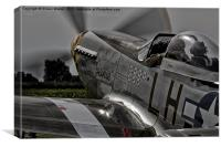 """P51 Mustang  """" JANIE """", Canvas Print"""