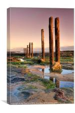 Old Posts, Canvas Print