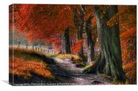 Ousbrough Woods-Autumnized 2, Canvas Print