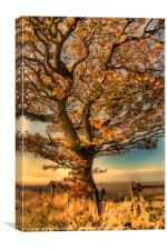 Painted Tree, Canvas Print