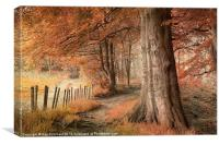Ousbrough Woods Texturised, Canvas Print