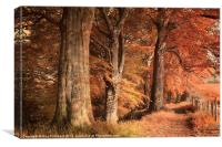 Ousbrough Woods(Colour Textured), Canvas Print