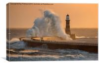 Rough Roker, Canvas Print