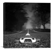 Middle of the Road, Canvas Print