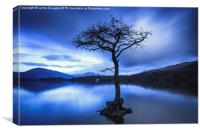 Midnight Blue, Loch Lomond, Canvas Print