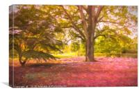 Pink Leaves in a Forest, Canvas Print
