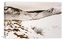 A View From Clennell Street, Canvas Print