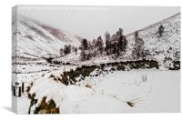Winter In The Coquet Valley, Canvas Print