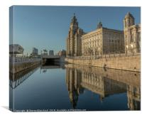 Liver building summers day, Canvas Print
