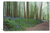 Bluebells in the Wind, Canvas Print