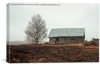 Birch Tree And Barn House On A Rainy Spring Day, Canvas Print