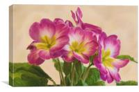 Floral Oil Painting, Canvas Print