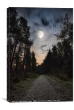 Dronley Forest, Canvas Print