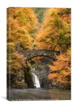 Hermitage Bridge, Canvas Print