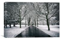 Winter Road Dundee, Canvas Print