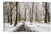 Camperdown Snow Dundee, Canvas Print
