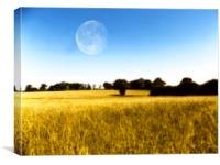 moon field, Canvas Print