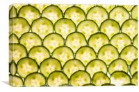 Sliced Cucumber, Canvas Print