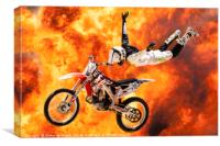 High Flyer, Canvas Print