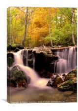 Waterfall in the forest during Autumn, Canvas Print