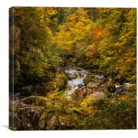 Autumn at the Hermitage, Canvas Print