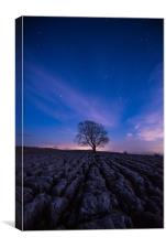 Malham Tree by night, Canvas Print