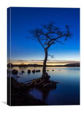 Lone Tree at Loch Lomond, Canvas Print