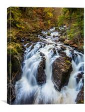 Autumn at the Waterfalls on the River Braan, Canvas Print