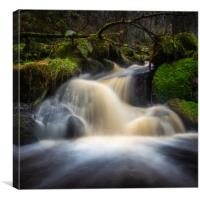 Waterfalls on a small brook, Canvas Print