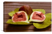 Sweet fresh fig , Canvas Print