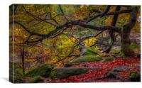 Autumn in the Gorge, Canvas Print