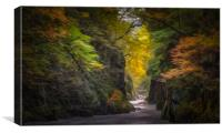 The Fairy Glen #3, Canvas Print