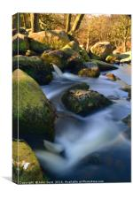 Padley Gorge, Derbyshire, Canvas Print