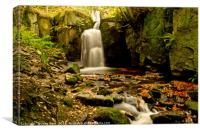 Lumsdale Falls in Autumn, Canvas Print