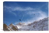 Soaring Above the Alps, Canvas Print