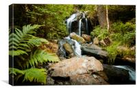 Cascade falls over mossy rocks in Czech forest., Canvas Print