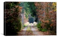Autumn forest road, Canvas Print