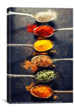 Colorful spices in metal spoons , Canvas Print