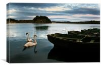 Swans on a Lake, Canvas Print