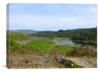 Loch Glendhu from the Kylestrome viewpoint, Canvas Print