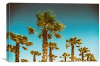 Green Palm Trees On Clear Blue Sky, Canvas Print