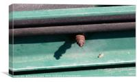 Tip of rusted screw, Canvas Print